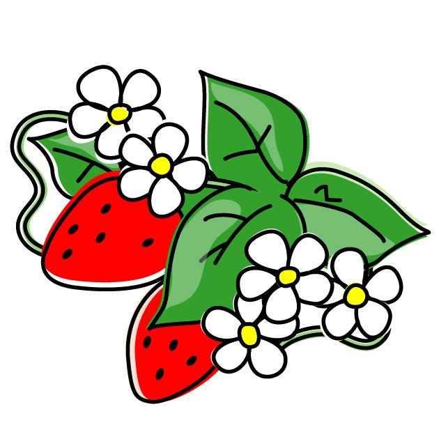 I_strawberry01